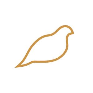 dove, pigeon, fly, bird, minimal, drawing, illustration, abstract, logo,