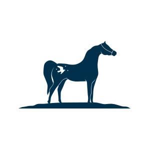 horse, hoof, bird, freedom, soul, equine, saddle, sport, elegant, logo,