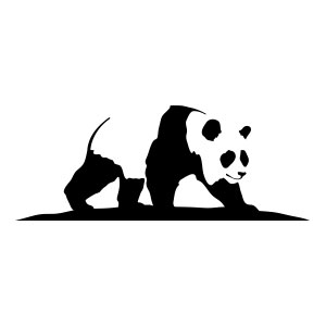 panda, black, white, bear, china, rice, bamboo, organic, illustration, drawing, east,
