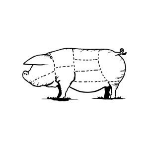 pig, butcher, knife, meat, plan, scheme, animal, domestic, swine, vintage, drawing, illustration, logo,