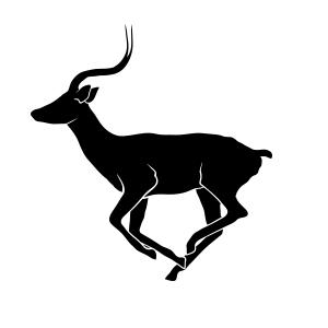 Antelope impala logo vector
